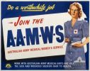 Recruiting poster for AAMWS