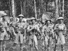 Ijbiri, Kokoda Trail, New Guinea. Officers of the 2/14th Battalion