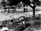 Children digging trenches at Ascot State School, Brisbane, 1942